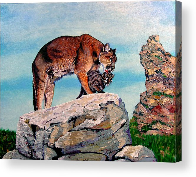 Original Oil On Canvas Acrylic Print featuring the painting Cougars by Stan Hamilton