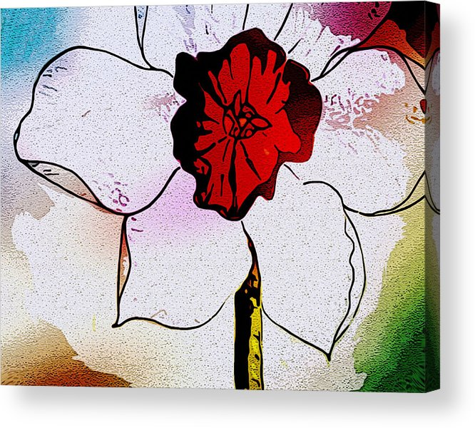 Daffodil Spring Flower Floral Red White Large Acrylic Print featuring the painting Daffy Down Dilly by Susan Epps Oliver