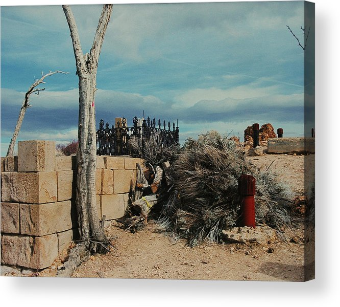 Dessert Acrylic Print featuring the photograph Dust To Dust by Lori Mellen-Pagliaro