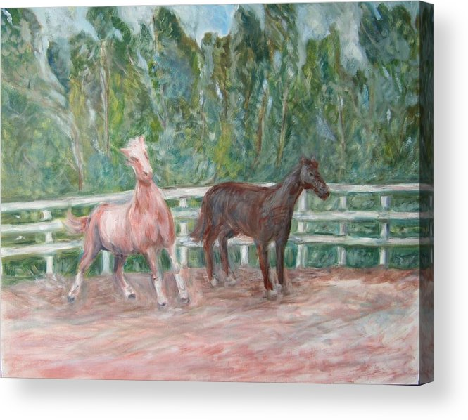Horse Landscape Animals Acrylic Print featuring the painting Fenced In by Joseph Sandora Jr