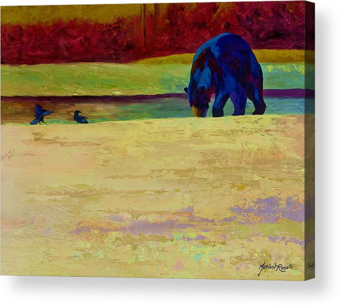 Bear Acrylic Print featuring the painting Foraging At Neets Bay - Black Bear by Marion Rose