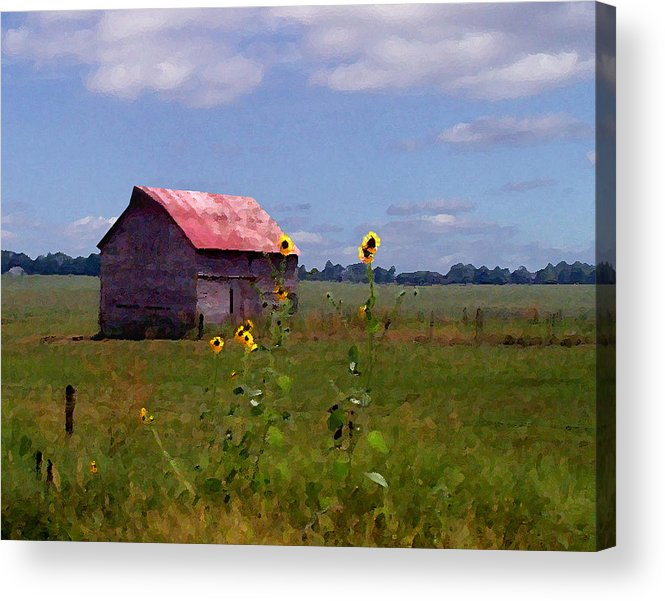 Landscape Acrylic Print featuring the photograph Kansas Landscape by Steve Karol