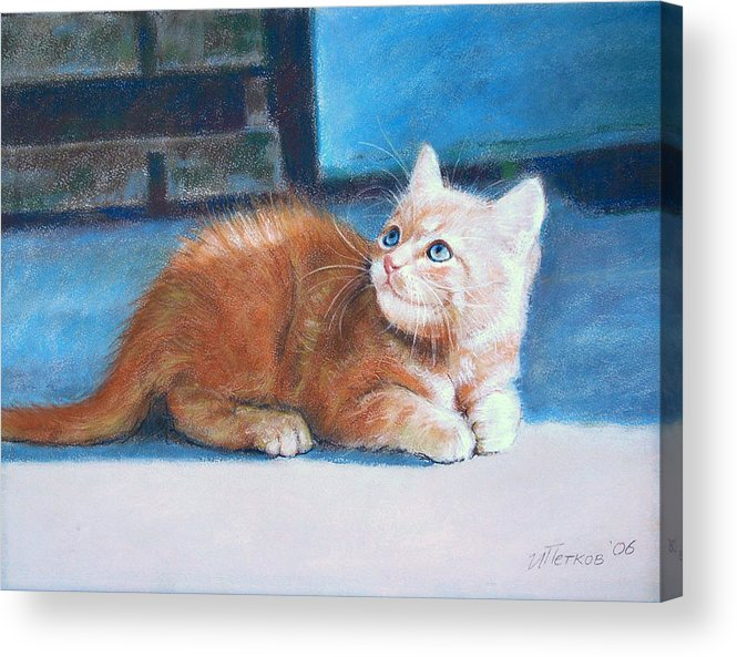 Cats Acrylic Print featuring the painting Kitten by Iliyan Bozhanov