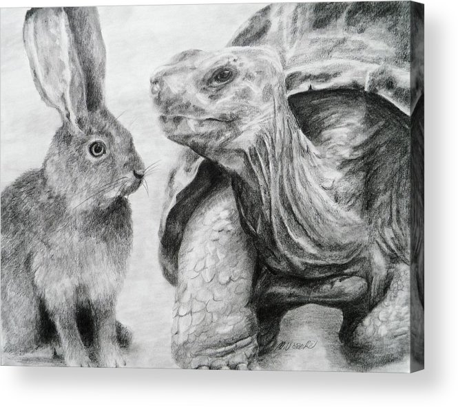 Hare Acrylic Print featuring the drawing No Hard Feelings by Meagan Visser