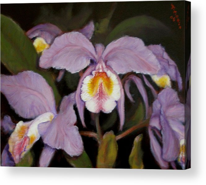 Realism Acrylic Print featuring the painting Orchids by Donelli DiMaria