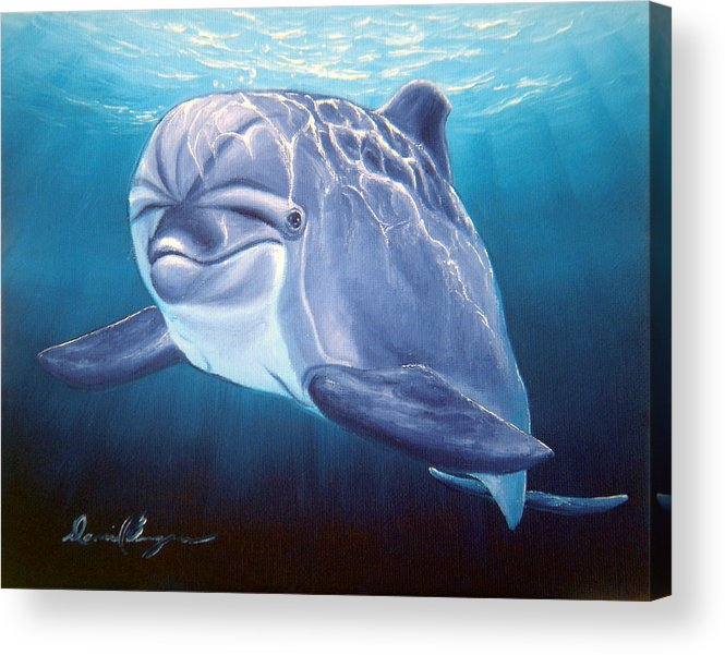Dolphin Acrylic Print featuring the painting Peaceful Greeting by Daniel Bergren