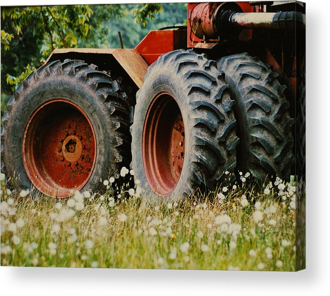Farm Acrylic Print featuring the photograph Restfull And Tired by Lori Mellen-Pagliaro