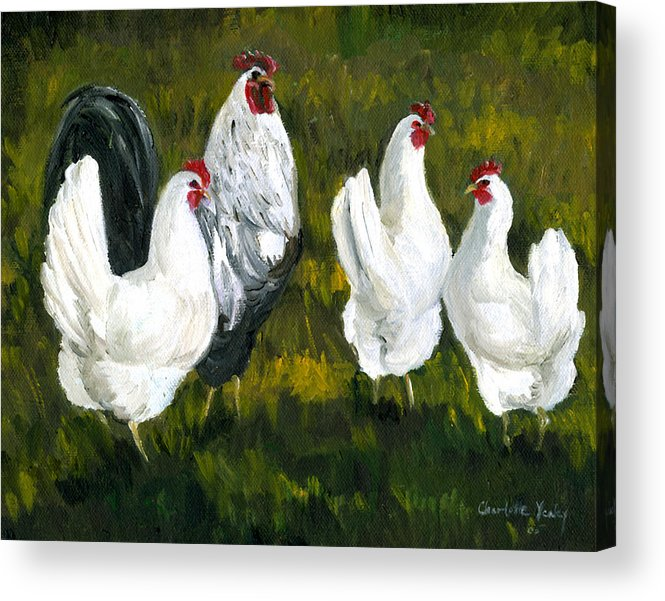 Rooster Acrylic Print featuring the painting Rooster And Hens by Charlotte Yealey