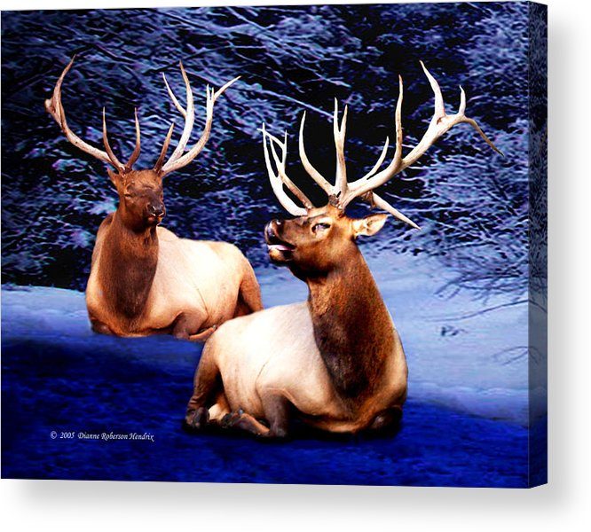 Alaska Acrylic Print featuring the photograph Royal Elk by Dianne Roberson