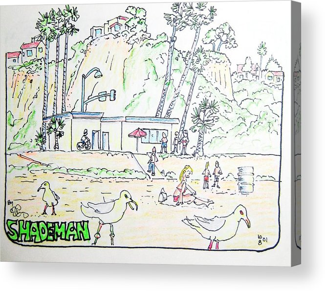Beach Acrylic Print featuring the drawing Seagull Beach by Robert Findley