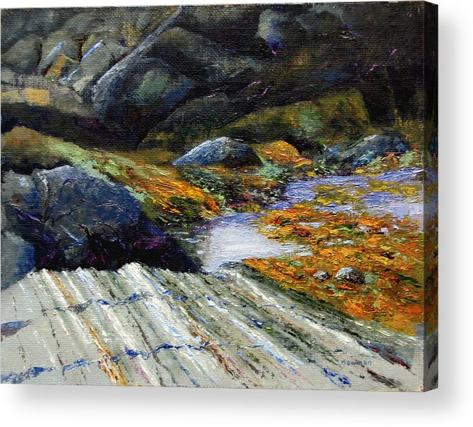 Landscape Acrylic Print featuring the painting Slack Tide by Bruce Newman