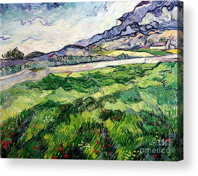 The Acrylic Print featuring the painting The Green Wheatfield Behind The Asylum by Vincent van Gogh
