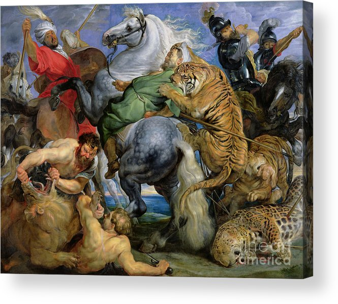 The Acrylic Print featuring the painting The Tiger Hunt by Rubens