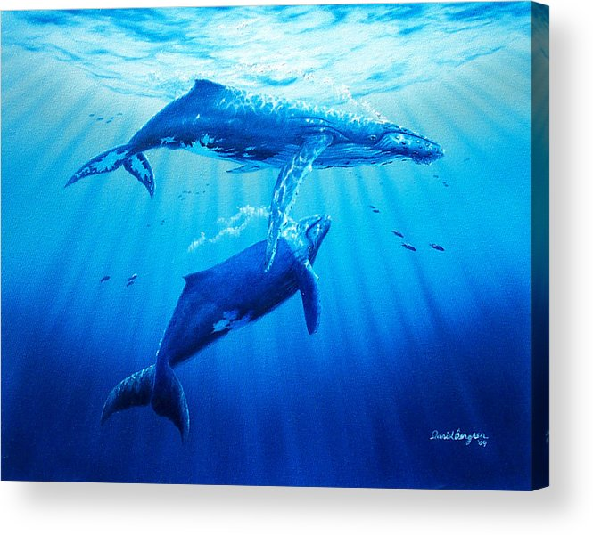 Whale Acrylic Print featuring the painting Together by Daniel Bergren