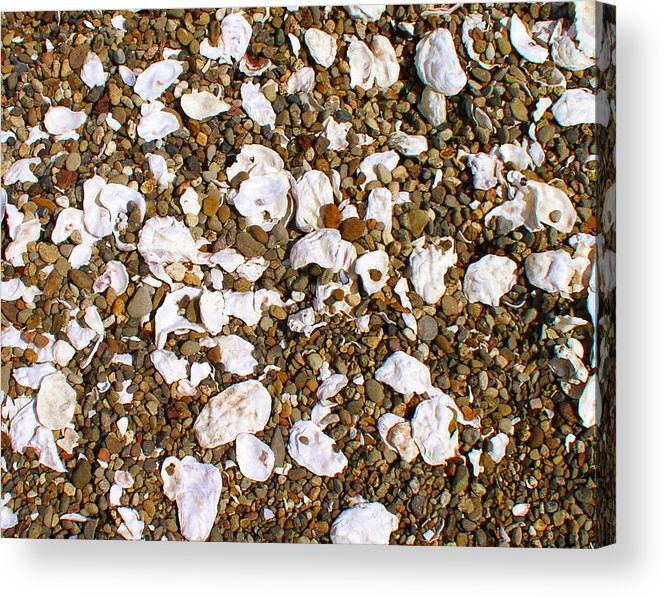 Shells Acrylic Print featuring the photograph Towano Pebbles by Valerie Josi