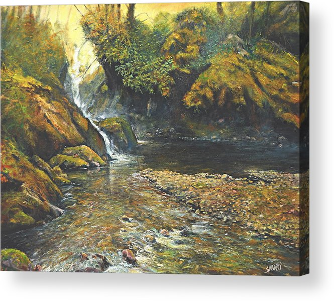 Landscape Acrylic Print featuring the painting Toward The Source by Craig shanti Mackinnon