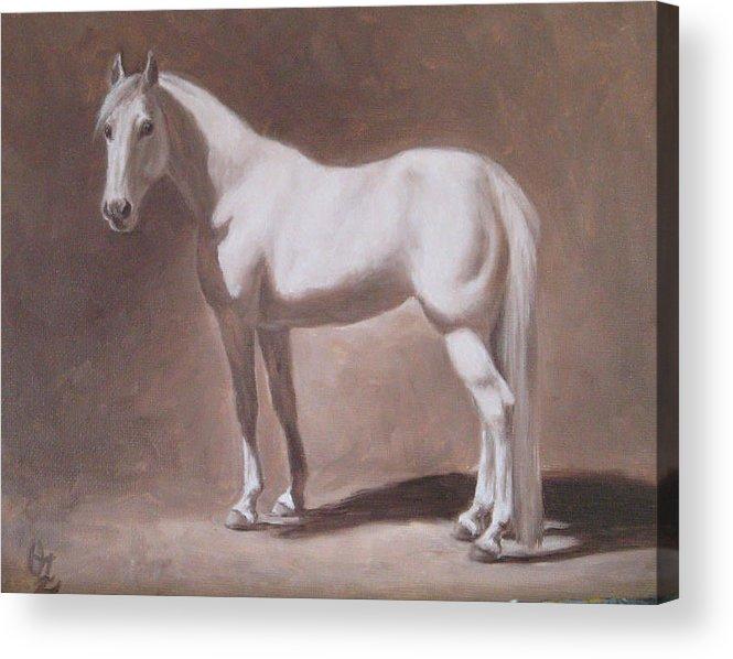 Horse Acrylic Print featuring the painting White Horse Study by Oksana Zotkina