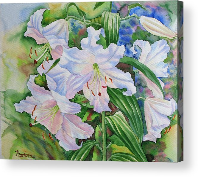Watercolor Acrylic Print featuring the painting White Lily. 2007 by Natalia Piacheva