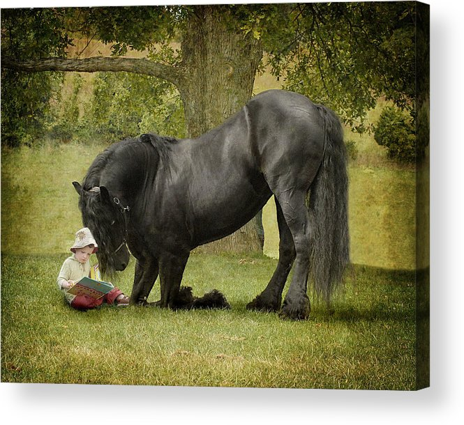 Friesian Acrylic Print featuring the photograph Once Upon A Time by Fran J Scott