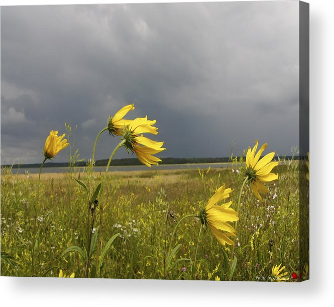 Landscape Acrylic Print featuring the photograph Dancing Before The Storm by Rhonda McDougall