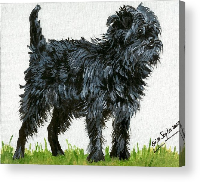 Affenpinscher Dog Acrylic Print featuring the painting Affenpinscher Dog by Olde Time Mercantile