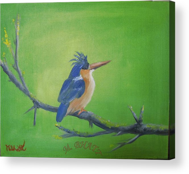 King Fisher Acrylic Print featuring the painting Blyth's King Fisher by M Bhatt