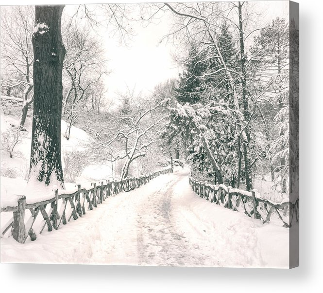 Nyc Acrylic Print featuring the photograph Central Park Winter Landscape by Vivienne Gucwa