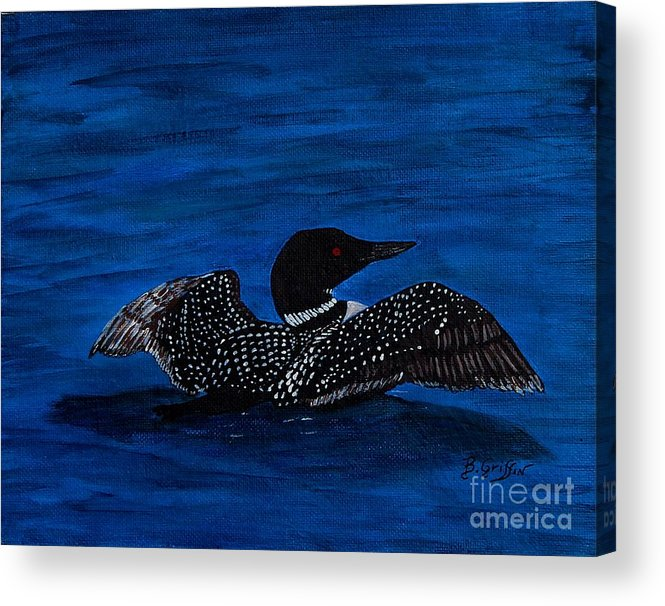 Barbara Griffin Acrylic Print featuring the painting Common Loon Preening by Barbara Griffin