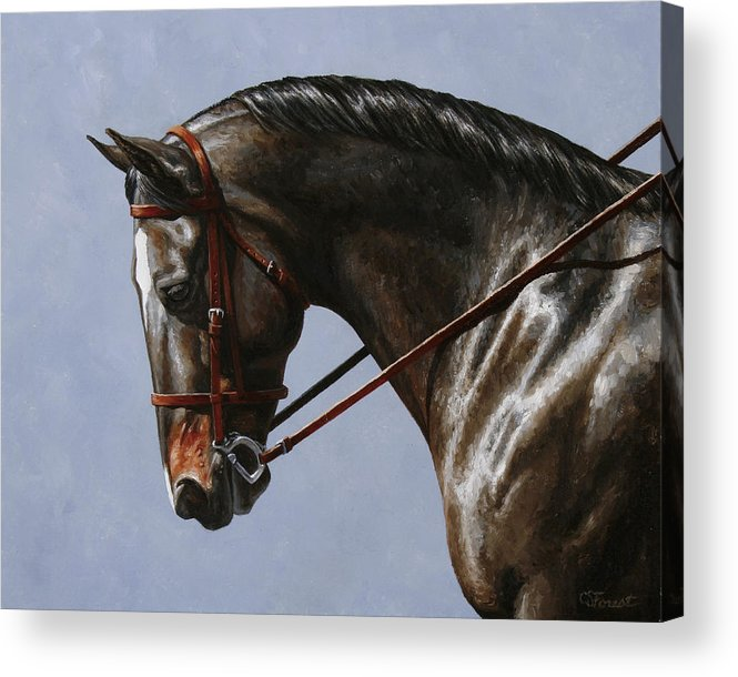 Horse Acrylic Print featuring the painting Horse Painting - Discipline by Crista Forest