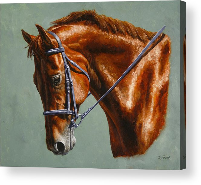 Horse Acrylic Print featuring the painting Horse Painting - Focus by Crista Forest