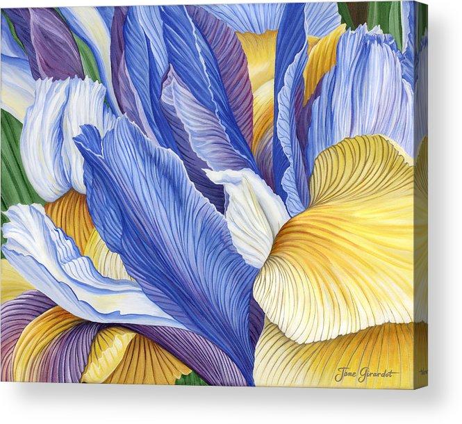 Iris Acrylic Print featuring the painting Iris by Jane Girardot