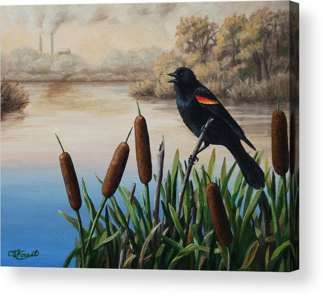 Birds Acrylic Print featuring the painting Last Song by Crista Forest