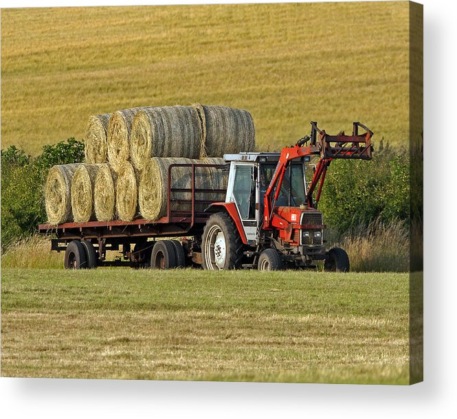 Hay Acrylic Print featuring the photograph Make Hay When Sun Shines by Paul Scoullar