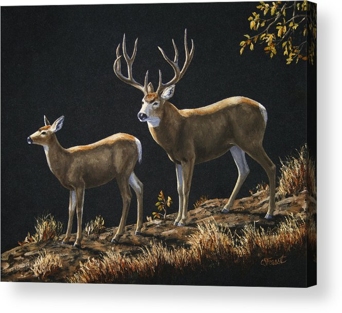 Deer Acrylic Print featuring the painting Mule Deer Ridge by Crista Forest