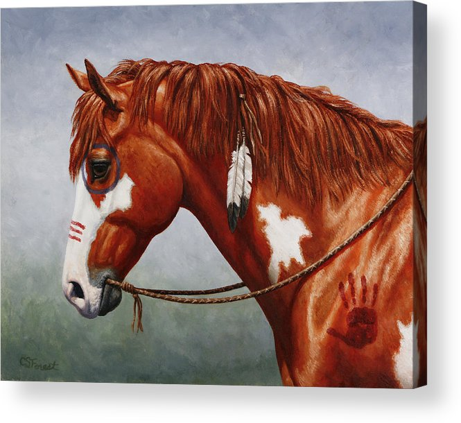 Horse Acrylic Print featuring the painting Native American War Horse by Crista Forest