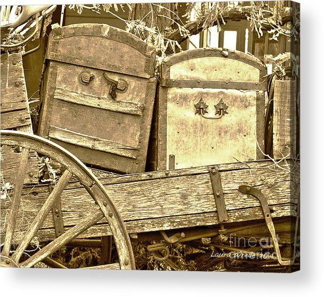 Genoa Acrylic Print featuring the photograph Old Trunks In Genoa Nevada by Artist and Photographer Laura Wrede