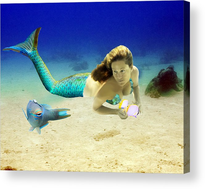 Mermaid Acrylic Print featuring the photograph Playmates by Paula Porterfield-Izzo