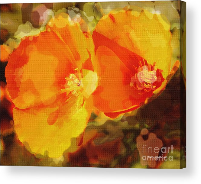 Abstract California Poppies Photographs Canvas Prints Canvas Acrylic Print featuring the photograph Poppies On Fire by Artist and Photographer Laura Wrede