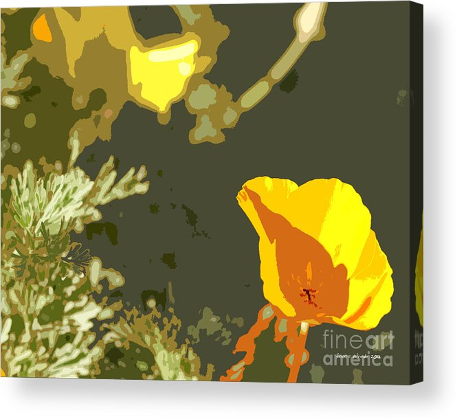 Abstract California Poppies Photographs Canvas Prints Acrylic Print featuring the photograph Retro Abstract Poppies 4 by Artist and Photographer Laura Wrede