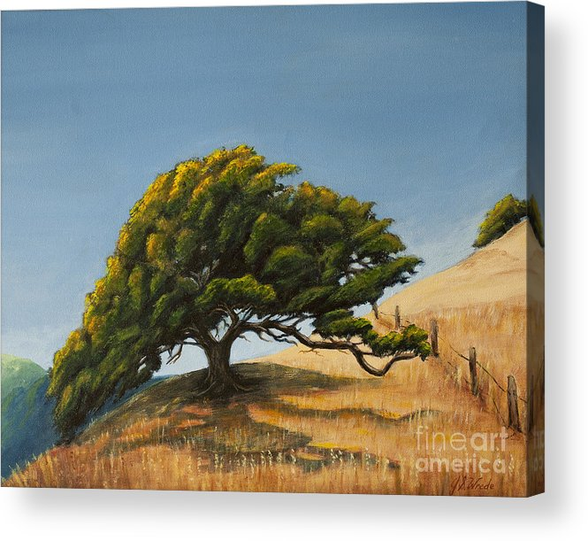 California Hills Acrylic Print featuring the painting Santa Clara Valley by Jeanne Wrede