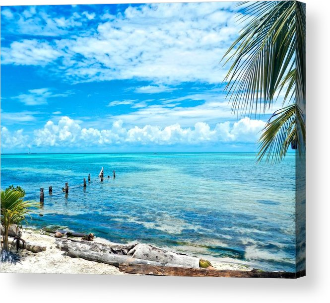 Art Photography Acrylic Print featuring the photograph Secluded Beach On Caye Caulker Belize by Mary Stuart