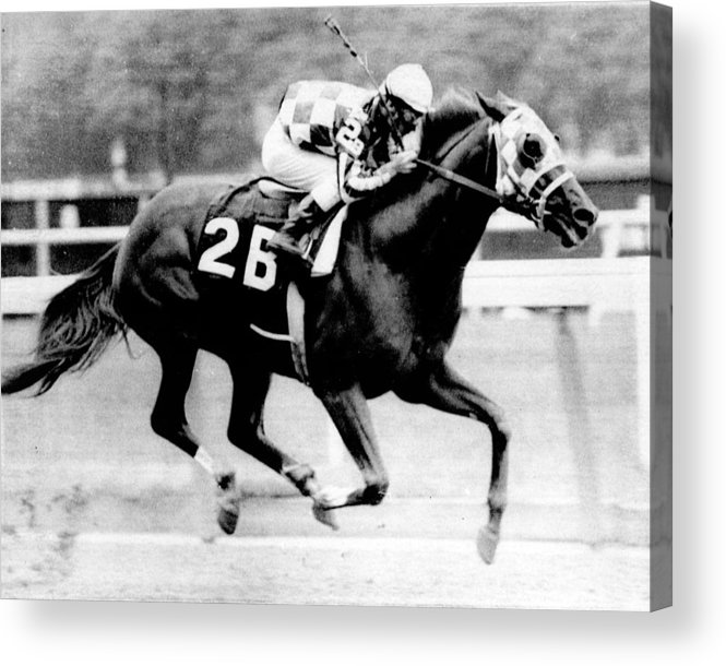 Classic Acrylic Print featuring the photograph Secretariat Vintage Horse Racing #12 by Retro Images Archive