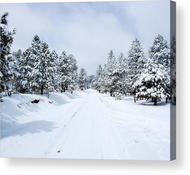 Snow Acrylic Print featuring the photograph Snow Day by Pam Garcia