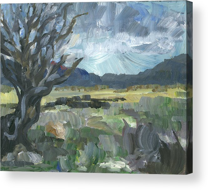 Landscape Acrylic Print featuring the painting Washoe Valley by Susan Moore