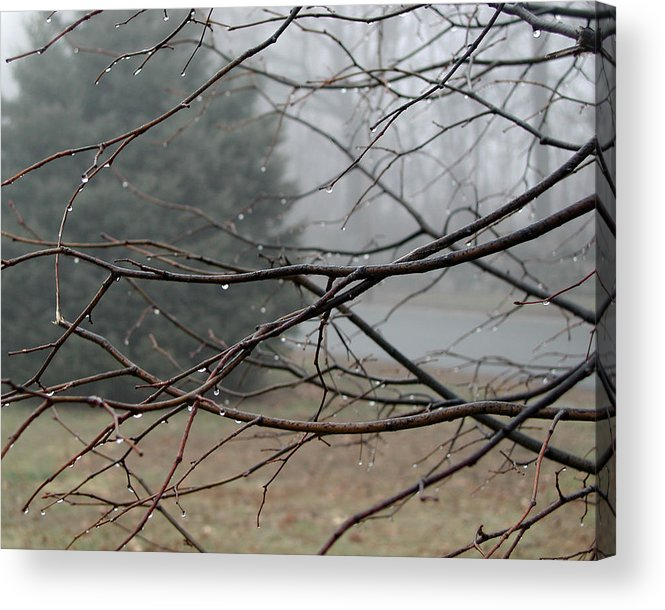 Fog Acrylic Print featuring the photograph Fog Hangs Heavy by Barry Doherty