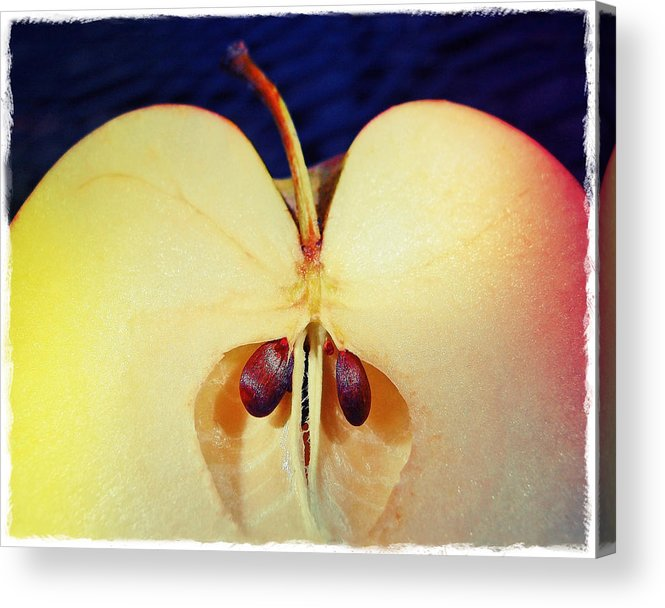 Apple Acrylic Print featuring the photograph Apple by Skip Hunt