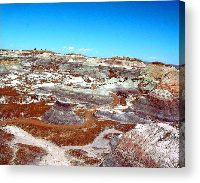 Arizona Acrylic Print featuring the photograph Badlands In The Painted Desert by Merton Allen