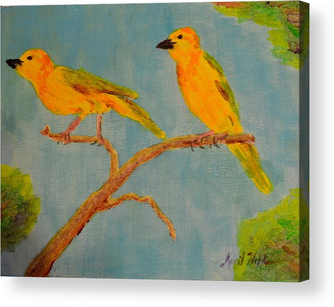 Birds Acrylic Print featuring the painting Birds by April Held