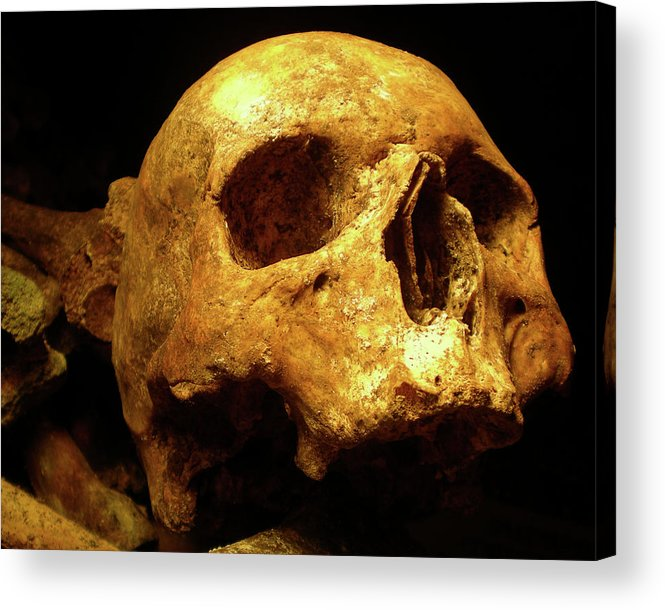 Death Acrylic Print featuring the photograph Face Of Life Lived by Paul Madura