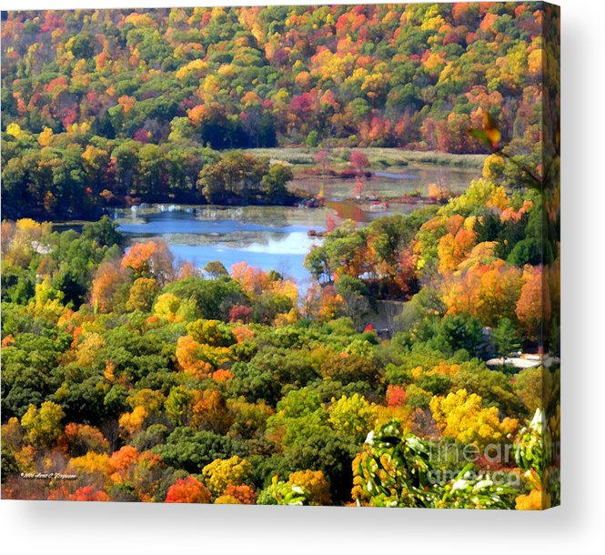 Fall Acrylic Print featuring the photograph Fall Lake by Anne Ferguson
